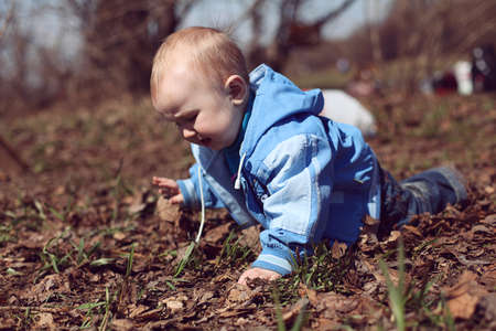baby is crawling in the meadow. boy.