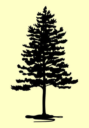 Silhouette of a pine tree. Vector on an isolated background, sketch. Ilustração