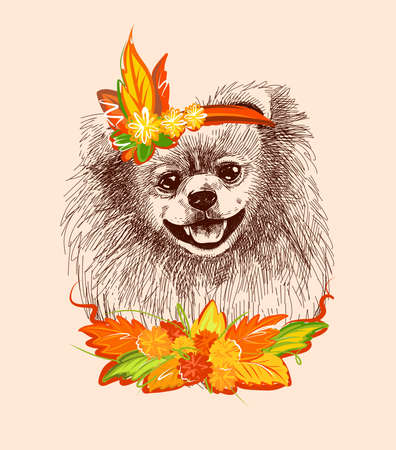 Pomeranian dog in the carnival outfit of autumn. Print illustration for t-shirts, postcards, etc. A sketch drawn by hand in a vector on an isolated background.