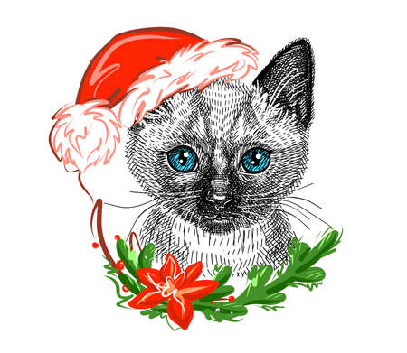 Illustration. Cute Siamese kitten in a Christmas Santa Claus hat. Sketch in a realistic style. Vector.