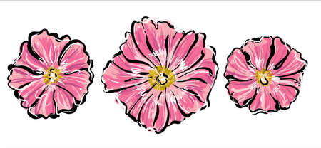 Blooming pink mallow flowers, set. Stylish sketch of hand-drawn ink and colored pastels.