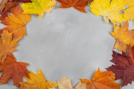 Autumn composition. Frame made of autumn maple leaves on blue background. Flat lay, top view, copy space
