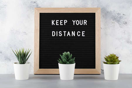 Keep Your Distance Warning Sign with flowers in pot located at distance from each other on gray background
