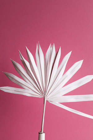 dry pink palm leaf in vase on purple background.Nature tropical, minimal, art, summer time concept, home decoration.