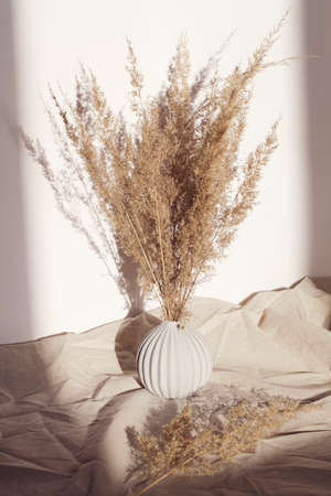 Pampas grass in vase on white background and crumpled linen with deep shadow. natural background. minimal, stylish concept. new trendy home decor. Stock fotó