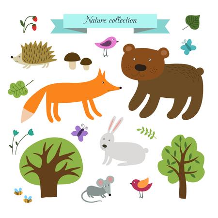 Vector set schattige wilde dieren in het bos. Afbeelding ID: 336555842
