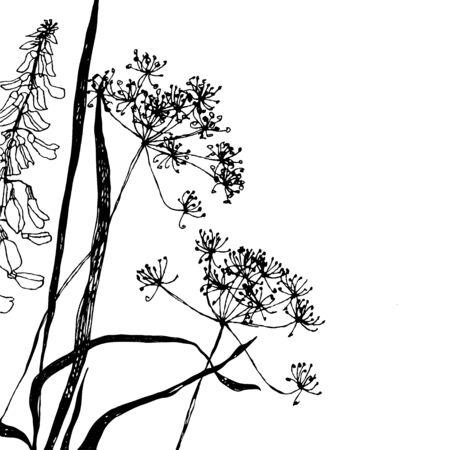 Wildflowers graphic.Vector illustratie.