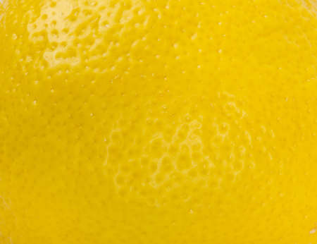 Lemon fruit background photo
