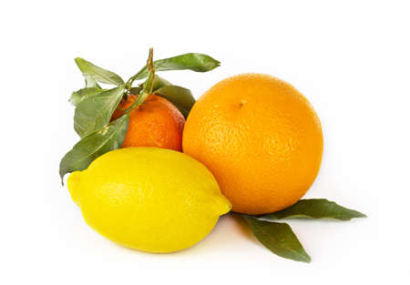 Citrus fruits on white background  mandarin, lemon and orange photo