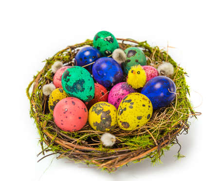 Easter eggs in the nest photo