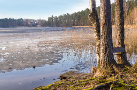 winter thaw: early spring