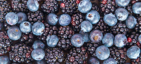 Fresh sweet blueberries and blackberries on white background