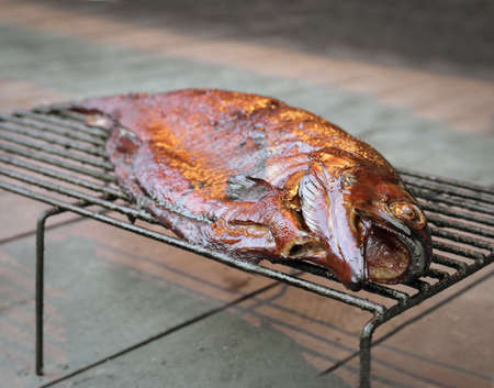 smoked trout freshly made outdoors summer time photo
