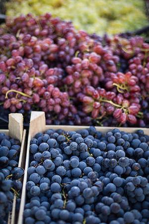 Grapes at the market photo