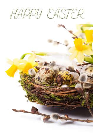 흰색 배경에 둥지에 부활절 달걀