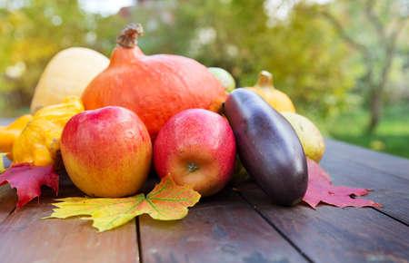 Autumn food crop vegetables