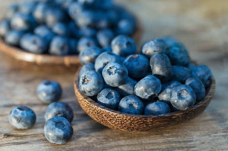 organic plants: Blueberries in garden Stock Photo