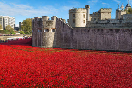 Tower of London 12 November 14. Ceramic poppies installation by Paul Cummins and Tom Pipe on October 11 2014 commemorate the 888,246 British and colonial military died in the 1914-1918 First World War