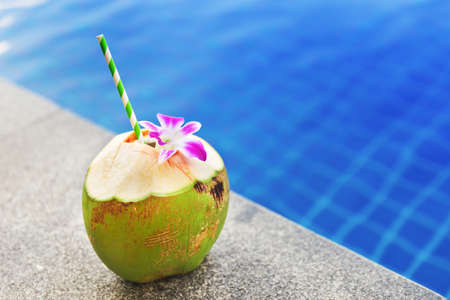 caribbean drink: Fresh coconut drink with orchid flower near swimming pool