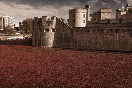 Tower of London 12 Nov 14. Ceramic poppies installation by Paul Cummins and Tom Pipe on October 11, 2014 commemorate the 888,246 British and colonial military who died in the 1914-1918 First World War