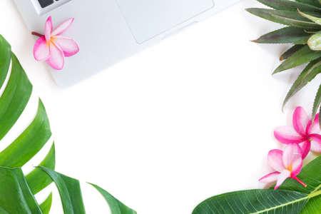 트로픽 플랫 누워 가기 열 대 식물 개념 스톡 콘텐츠