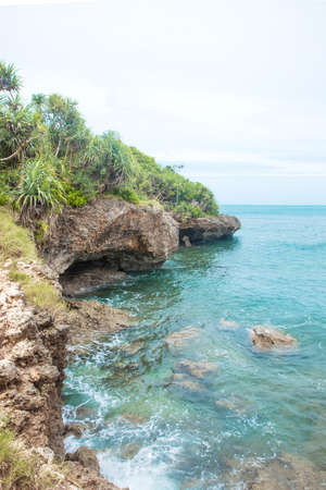 Idillic Bali coral ocean coast with turquoise water
