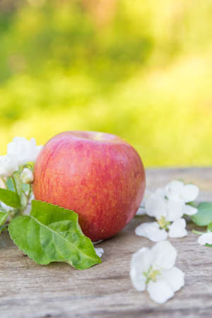 Fresh sweet juicy red apples with flowers on a wooden  in garden