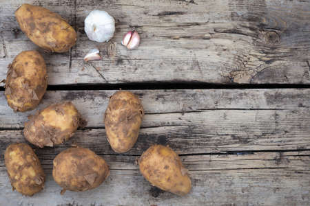 Still life dirty rustic potatoes harvest crop top view flat layout