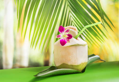 Tropical exotic fresh green coconut water drink near palm with orchid flower and straw Stock Photo