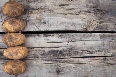 Still life dirty rusic potatoes harvst crop top view flat layout