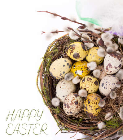 Easter eggs in the nest on a white Stock Photo
