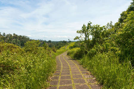 Famous Campuhan ridge walk with tropical view and palm trees in Ubud, Bali, Indonesia Zdjęcie Seryjne