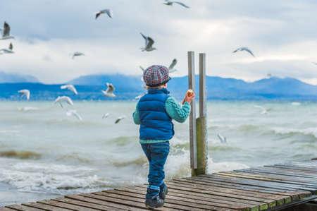 Schattige peuter jongen voeden vogels op een koude weer, terug te bekijken