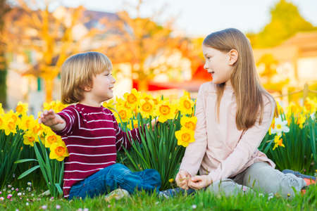 Two cute kids, little boy and his big sister, playing in the park between yellow daffodils flowers at sunset photo