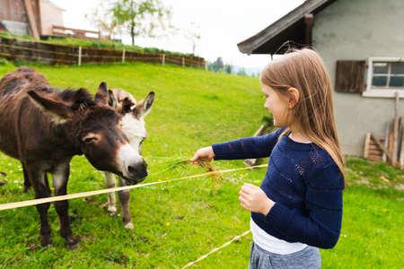 Cute little girl feeds donkey in a farm