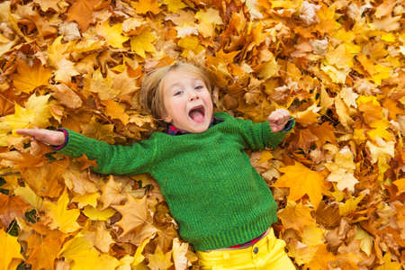 young love: Autumn portrait of a cute little boy of 4 years old, playing with yellow leaves in the park, wearing green pullover Stock Photo