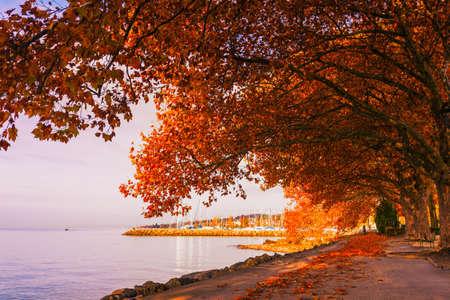 Mooi de herfstlandschap, Meer Genève, Zwitserland Stockfoto