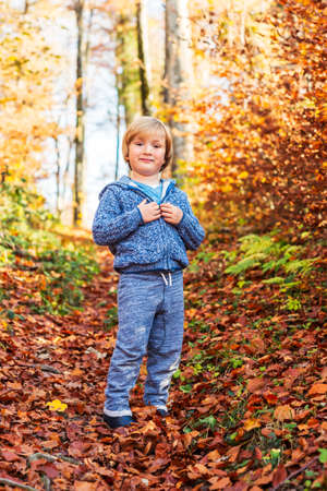 knitted jacket: Autumn portrait of a cute little boy in forest, wearing blue knitted jacket and joggers