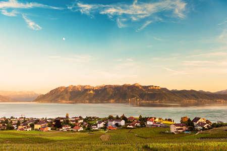 montreux: Lavaux vineyards in spring, Switzerland