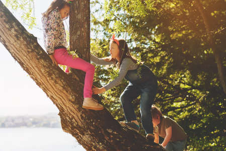 Group of young happy kids playing outside on a nice summer day, claiming a tree