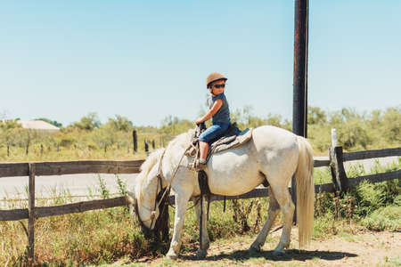 camargue: Happy little boy enjoying summer vacation in Camargue, France. Child visiting horse ranch Stock Photo