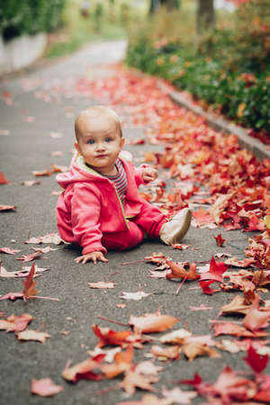 Adorable little baby girl of 9-12 month old playing outdoors on a nice autumn day