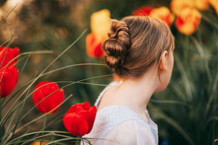 Back view of little girl with beautiful hairpiece style Stock Photo