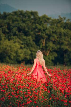 Beautiful woman enjoying nice day in poppy field, wearing pink dress, back view 写真素材 - 117127792