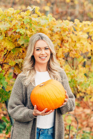 Autumn portrait of beautiful woman with blond curly hair, holding orange pumpkin, wearing knitted brown longline cardigan, posing in golden vineyards