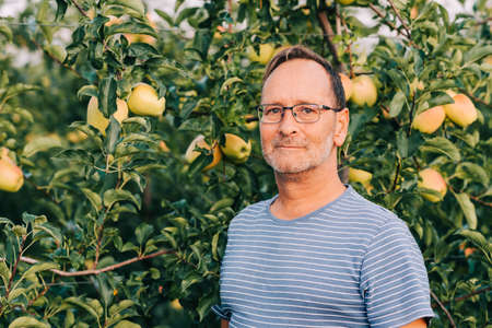 Man farmer posing in apple orchard, wearing stripe t-shirt and glasses