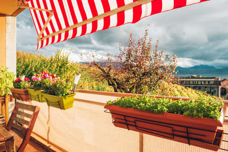 Bright and cozy balcony with many potted plants
