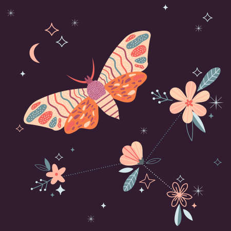 Celestial card withbutterfly, moon and flowers. Vector illustration Illustration