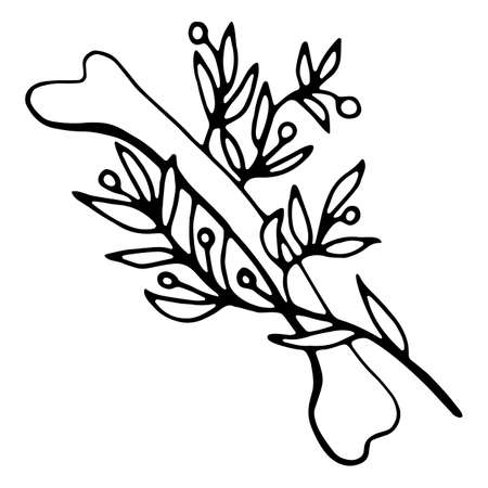 Vector isolated element, anatomy, bone with flower. Hand drawn doodle.