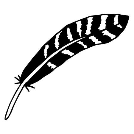 Vector isolated element, the feather of a bird. Hand drawn doodle.